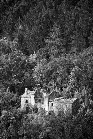 Nad Livadama  - © Zoran Osrečak
