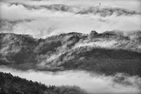 Magleno jutro s Pićna  - © Zoran Osrečak