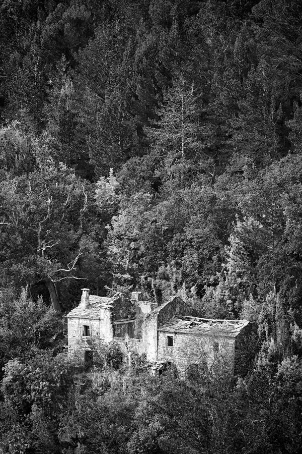 Nad_Livadama.jpg - © Zoran Osrečak